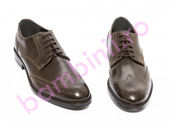 Pantofi barbati eleganti 137 maro 40-46