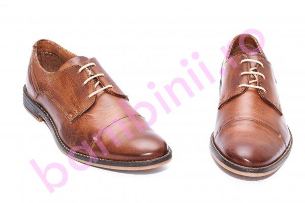 Pantofi barbati piele naturala 209R21 maro 40-46