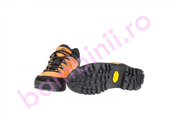Pantofi goretex 220 negru+port
